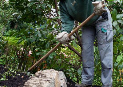 Fachmännische Pflege Des Gartens