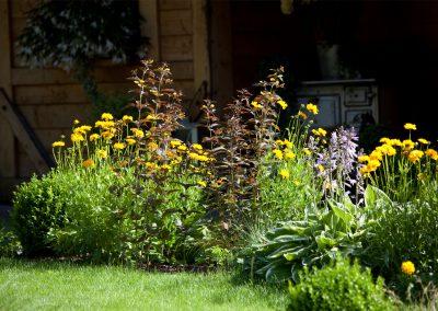 Blumen im Gartenbeet