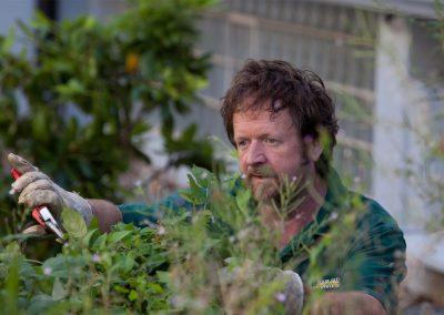 Professionelle Gartenpflege durch Team Grün