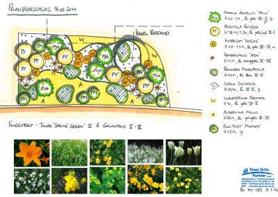 Pflanzpläne perfekt auf den Garten abgestimmt