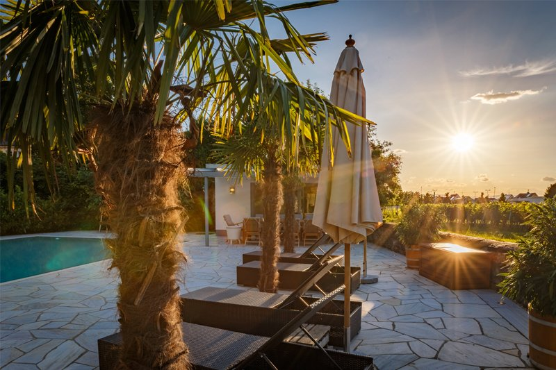 Traumhafter Gartenpool mit Palmen