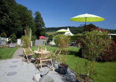 Gartenprofis beraten Sie bei der richtigen Wahl von Pflanzen