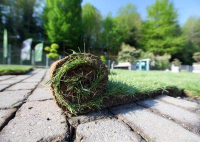 Rollrasen Verlegung als Teil der Gartengestaltung