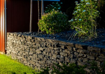 Gartenpflanzen auf der Steinmauer