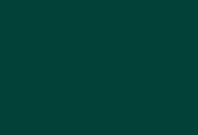 Worldskills Auszeichnung - Team Grün