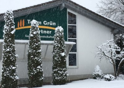 Das Team Grün Bürogebäude