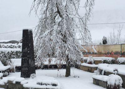 Schneegestöber Im Gartenpark