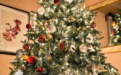 Weihnachtsbaum Pflege – Worauf Sie achten sollten!