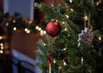 Grüner Weihnachtsbaum In Wohnung