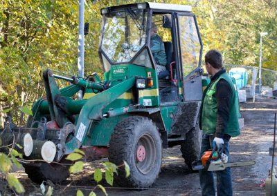 Baumfällarbeiten von Landschaftsgärtnern