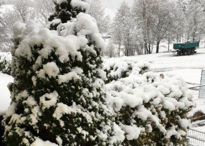 Winterlichen Garten gestalten