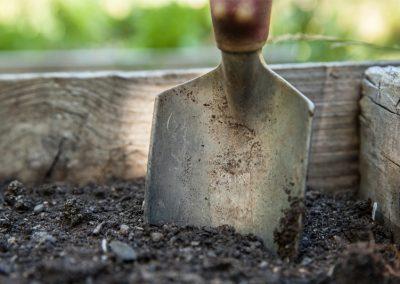 Gartenvorbereitungen im Februar