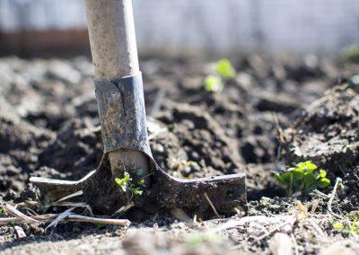 Gartenarbeiten einstieg