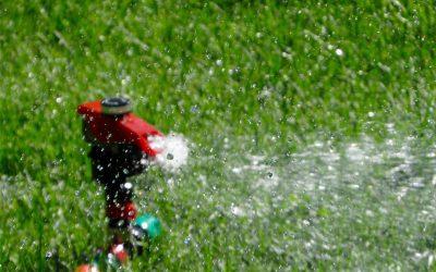 Rasenbewässerung im Sommer, Tipps und Tricks