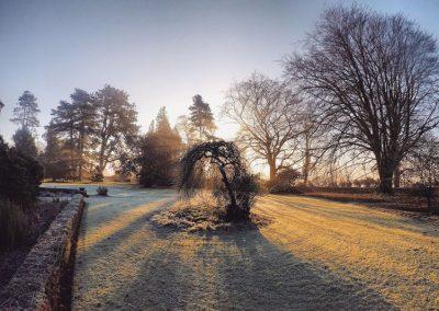 Frostschutz für den Garten im Winter