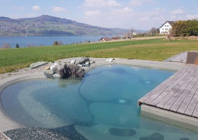 Biodesign Pool Bau In Freiburg