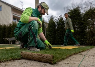 Professioneller Gartenbau In Der Stadt