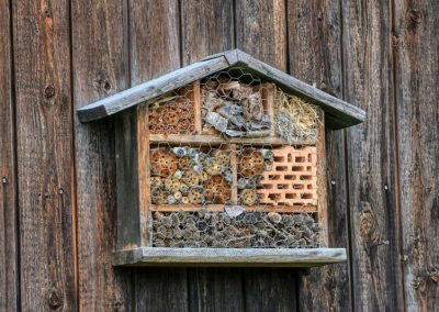 Ideales Insektenhotel Für Bienen Und Schmetterlinge