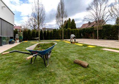 Gartenexperten verlegen Rollrasen