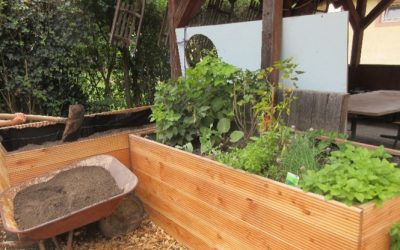 """Ein Hortgarten Entsteht – Projekt """"Gemüse Pflanzen. Gesundheit Ernten"""""""