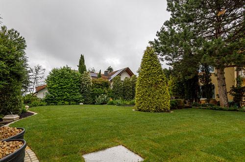Baume-Und-Gehoelze-Im-Garten